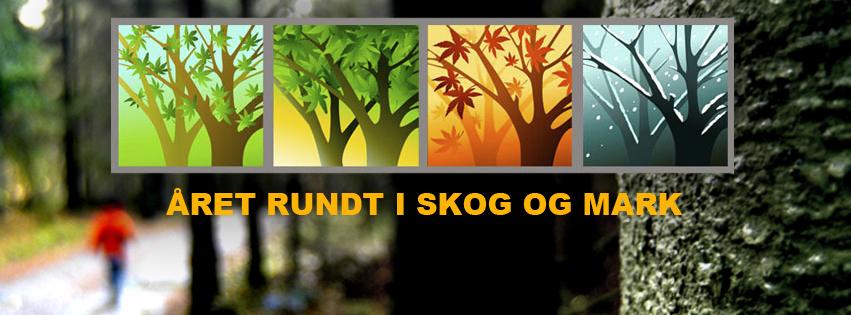naturkalenderen_fb-forside_skog